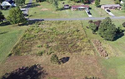 Grainger County Residential Lots & Land For Sale: Lots 75 & 80 Sycamore St