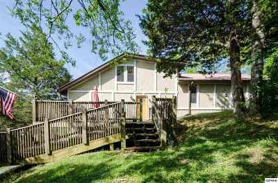 Sevierville Single Family Home For Sale: 1104 W New Era Road