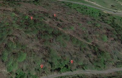 Grainger County Residential Lots & Land For Sale: Lot 87 Huckleberry Hollow Rd