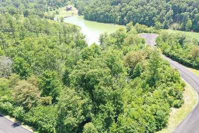 Grainger County, Hamblen County, Hawkins County, Jefferson County Residential Lots & Land For Sale: Lot 25 Stone Harbor Dr