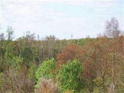 Meigs County Residential Lots & Land For Sale: Lot 37,38,39 Brickell Ridge Rd.