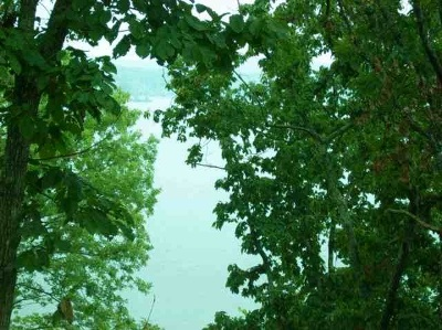 Rhea County Residential Lots & Land For Sale: Lakeside Lodge Lot 20