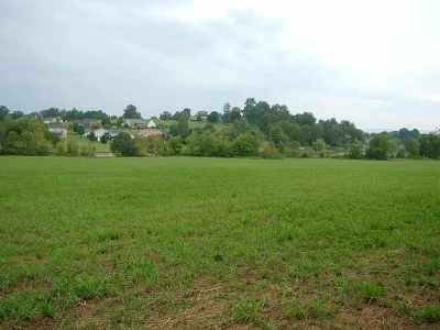 Rhea County Residential Lots & Land For Sale: Lot #5 New Union Road #lot #5