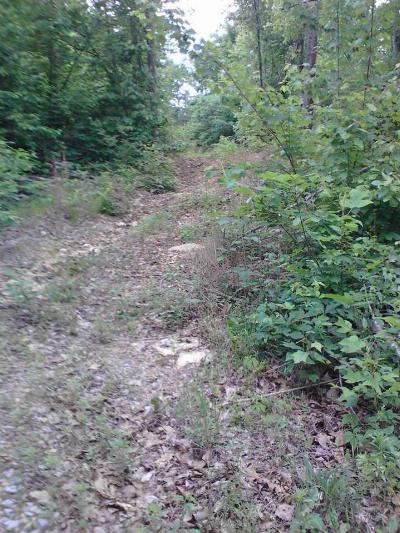 Rhea County Residential Lots & Land For Sale: 85 Lone Mountain Road