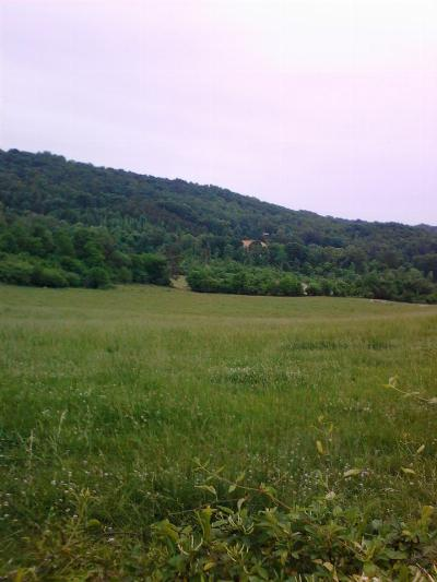 Rhea County Residential Lots & Land For Sale: 10 Old Graysville Road #rhea cou