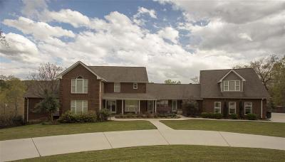 Dayton Single Family Home For Sale: 393 Horseshoe Circle