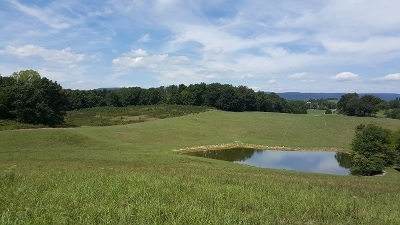Rhea County Residential Lots & Land For Sale: 49ac Walnut Grove Church Road