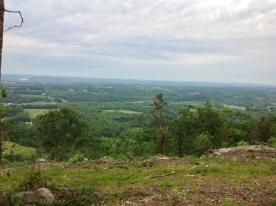 Rhea County Residential Lots & Land For Sale: 1137 Escape Drive