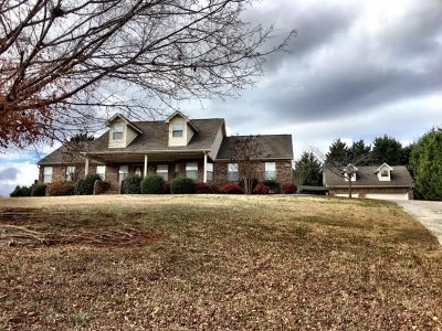 Riceville Single Family Home For Sale: 3440 Highway 11