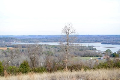 Rhea County Residential Lots & Land For Sale: 1.53ac Summit Drive
