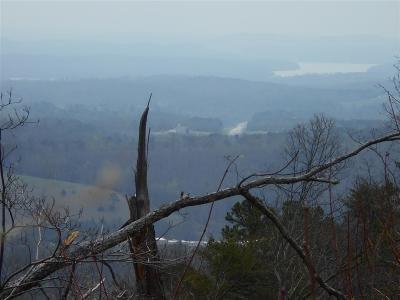 Rhea County Residential Lots & Land For Sale: Tbd Riddle Street