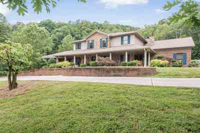 Cleveland Single Family Home For Sale: 162 Knobb Hill Drive