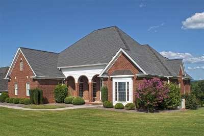 Flagstone Single Family Home For Sale: 210 Flagstone Drive