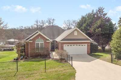 Birchwood TN Single Family Home For Sale: $574,900