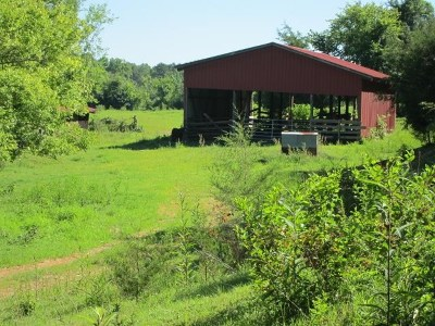 Meigs County Residential Lots & Land For Sale: 1445 Lower River Rd