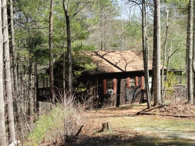 Reliance Single Family Home Contingent: 196 Lower Towee Lane