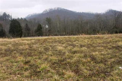 Etowah Residential Lots & Land For Sale: Tennessee Avenue #Highway