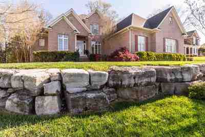Ooltewah Single Family Home For Sale: 8212 Rambling Rose Drive