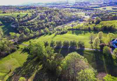 Rhea County Residential Lots & Land For Sale: Meadow Green Lane #9.13 Acr