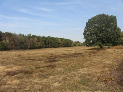Delano Residential Lots & Land For Sale: Tract 10 Delano Road