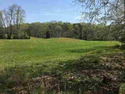 Roane County Residential Lots & Land For Sale: 3307 Kingston Highway