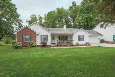 Cleveland Single Family Home For Sale: 540 Mitchell Road SE