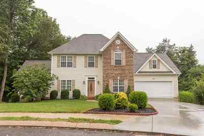 Lenox Hills Single Family Home For Sale: 3935 Willow Bend Trail