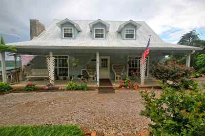Spring City Single Family Home For Sale: 715 William Drive