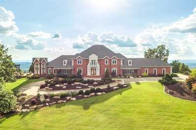 Ooltewah Single Family Home For Sale: 9531 Mountain Lake Drive