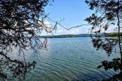 Meigs County Residential Lots & Land For Sale: Lot 76 Chickamauga Pt.
