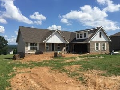 Sweetwater Single Family Home For Sale: 208 Duseth Drive