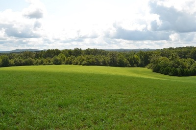 Rhea County Residential Lots & Land For Sale: Shady Lane Road