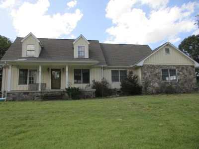 Spring City Single Family Home For Sale: 133 Flynn Drive