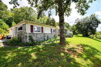 Spring City Single Family Home For Sale: 25744 Rhea County Highway