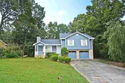 Ooltewah Single Family Home For Sale: 4930 Hunter Village Drive
