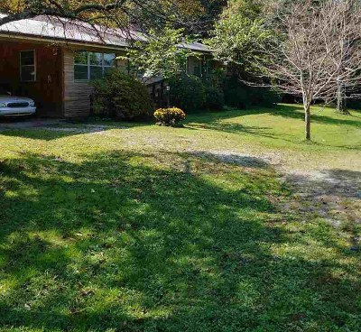 Decatur Single Family Home For Sale: 18868 Nopone Valley Road