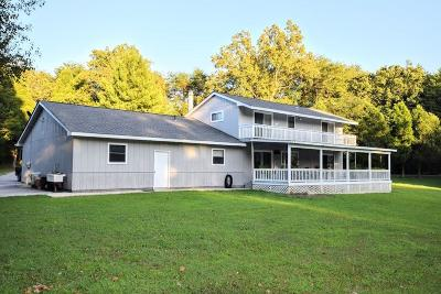 Spring City Single Family Home For Sale: 824 Rhea Springs Road