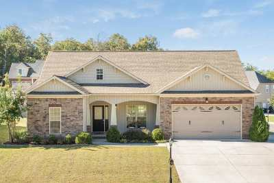 Ooltewah Single Family Home For Sale: 7601 Duskview Court