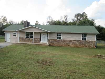 Spring City Single Family Home For Sale: 159 Mandee Lane