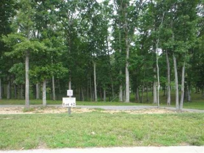 Spring City Residential Lots & Land For Sale: 507 Waterfront Way