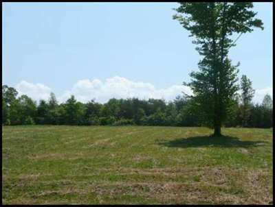 Englewood Residential Lots & Land For Sale: Lot 32 County Road 545
