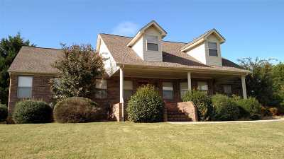 Riceville Single Family Home For Sale: 3440 Higway 11
