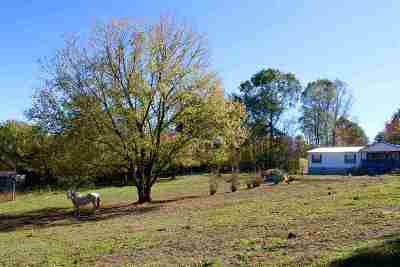Decatur Single Family Home For Sale: 231 Ivy Moore Circle