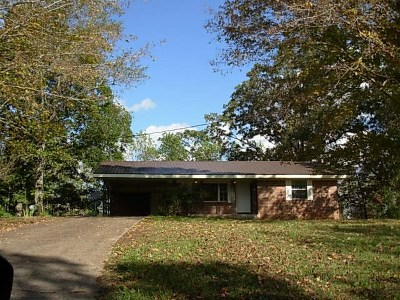 Decatur Single Family Home For Sale: 3588 N Hunter Bend Road N