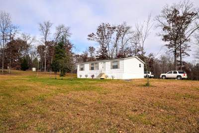 Spring City Single Family Home For Sale: 106 Swafford Road