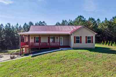 Ocoee Single Family Home For Sale: 279 Mountain View Circle