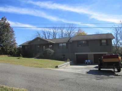 Etowah Single Family Home For Sale: 103 County Road 513