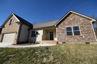 Cleveland Single Family Home For Sale: 142 Briar Meadow Trail SE
