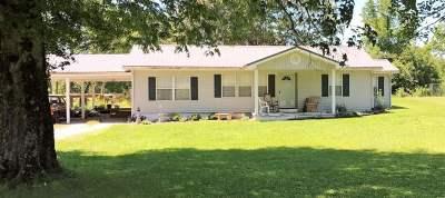Ocoee Single Family Home For Sale: 4423 Highway 411