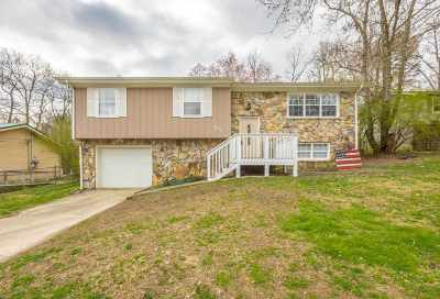 Soddy Daisy Single Family Home For Sale: 1622 Wendy Circle